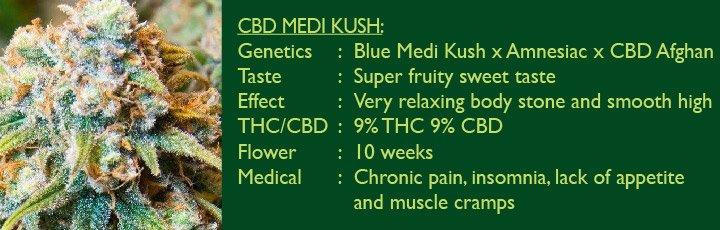CBD Medi Kush