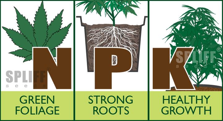 Nitrogen-Phosphorus Potassium