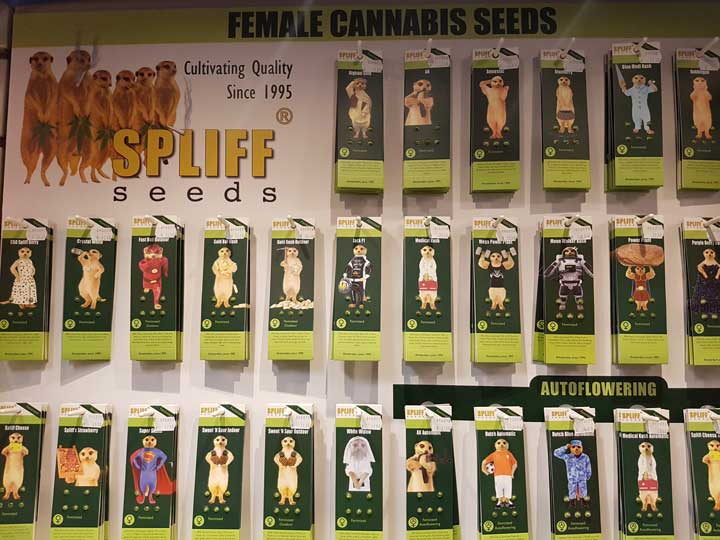 cannabis seeds Amsterdam menu