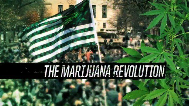 Marijuana Seeds Close Up