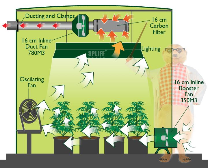 Tent Air Circulation